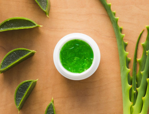 7 Ways To Use Aloe Vera For Perfect Skin